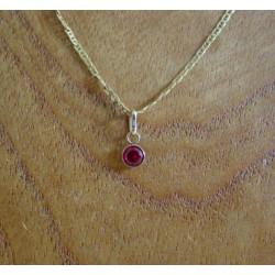 Hanger ~ ADELINA Gouden 14 karaats hanger met Rode Zirconia
