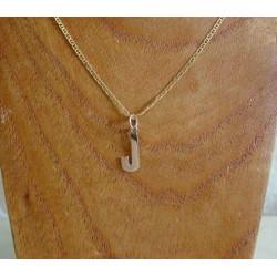 Hanger ~ Gouden 14 karaats Letter J hanger