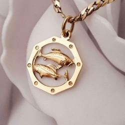 Hanger ~ Gouden 14 karaats vissen hanger Sterrenbeeld