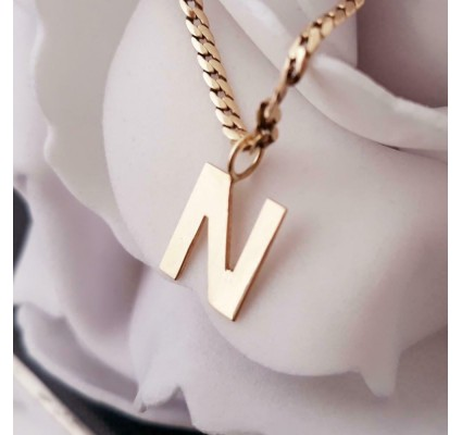 Hanger ~ Gouden 14 karaats letter N Hanger