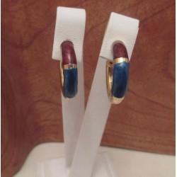 Oorbellen ~ Gouden Oorbellen met 2 kleurig Emaille